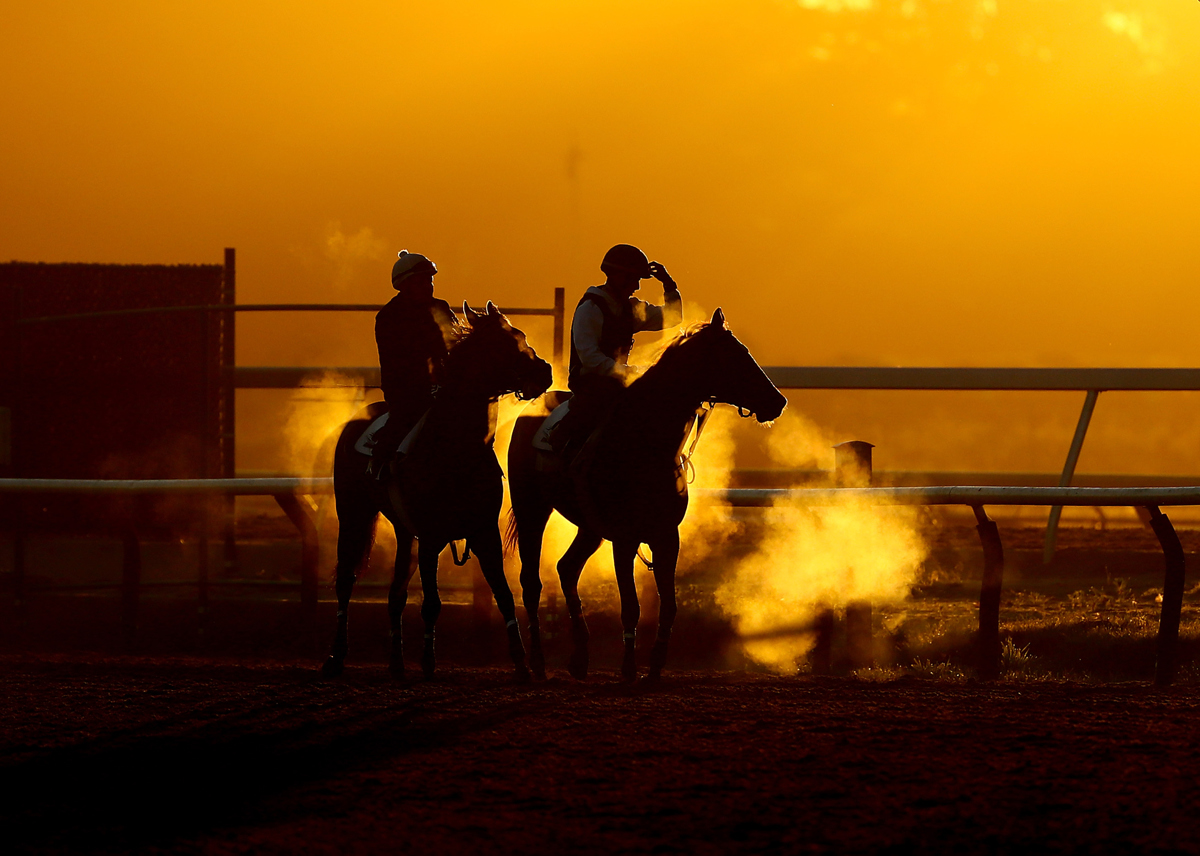 Thoroughbreds and Exercise Riders train at sunrise  prior to the 149th running of the Belmont Stakes at Belmont Park at Belmont Park on June 9, 2017 in Elmont, New York.