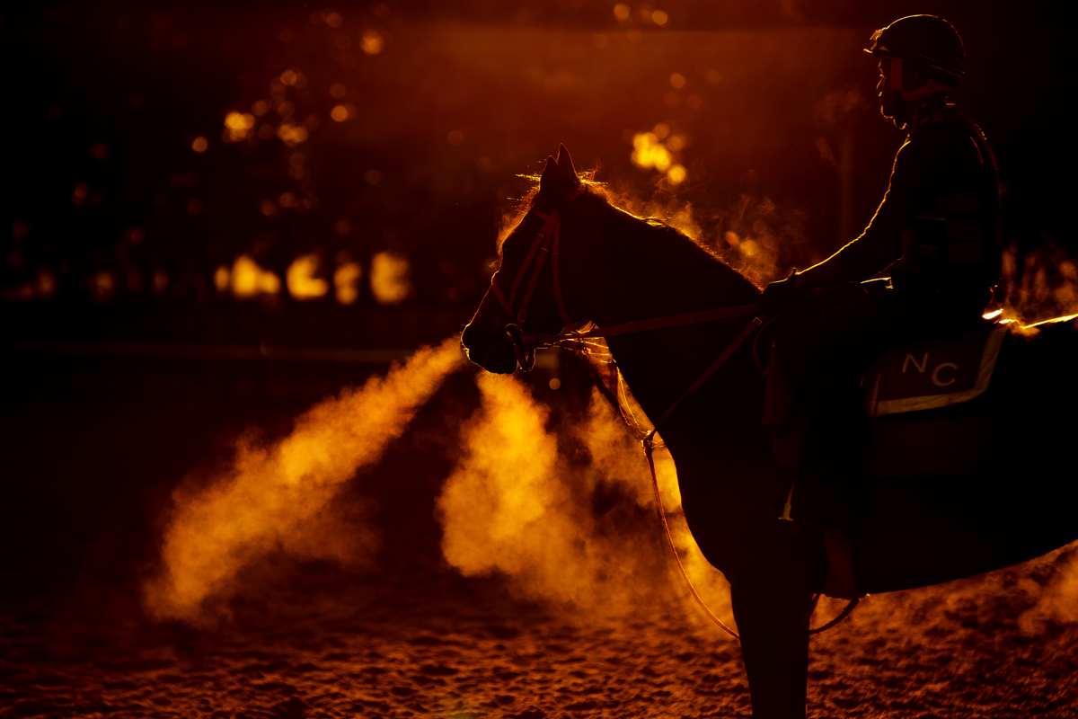 A thoroughbred and Exercise Rider stand on the track at sunrise  prior to the 149th running of the Belmont Stakes at Belmont Park at Belmont Park on June 9, 2017 in Elmont, New York.