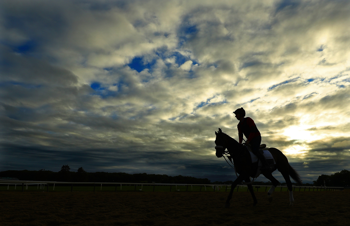 A General view of a horse and exercise rider training on the track  prior to the 149th running of the Belmont Stakes at Belmont Park on June 7, 2017 in Elmont, New York.