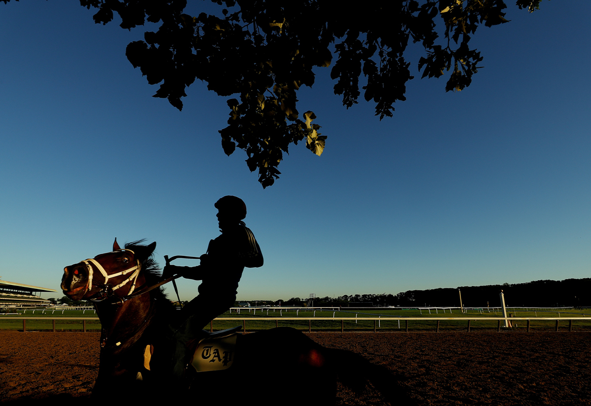 A Thoroghbred and Exercise Rider train prior to the 149th running of the Belmont Stakes at Belmont Park on June 8, 2017 in Elmont, New York.
