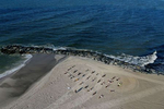 An aerial view of members of the {quote}Life Outside The Box {quote} Fitness Club during a training session led by fitness instructor Alexa Hoovis at the beach on August 18, 2020 in Long Beach, New York.  Gyms, which have been closed in New York since mid-March to help prevent the spread of the coronavirus, will be allowed to open again as soon as August 24th Governor Andrew Cuomo has announced.  Gyms will be limited to a third of their capacity, and they need to maintain a sign-in sheet to help contact tracers in case of a virus outbreak. Air filters must be able to help prevent the transmission of viral particles. People must wear masks at all times.