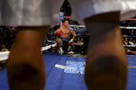 Ricky Hatton of England sits in the corner as referee Kenny Bayless counts after Hatton was knocked down in the first round by Manny Pacquiao of the Philippines during their junior welterweight title fight at the MGM Grand Garden Arena May 2, 2009 in Las Vegas, Nevada.