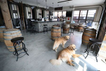 Buddy and Barley wait as their owners Mark and Karen Heuwetter prepare their beer orders prior to taking the dogs on a beer delivery drive to their customers on May 03, 2020 in Huntington Village, New York.  Mark and Karen Heuwetter own the Six Harbors Brewery and have trained their two Golden Retrievers Buddy and Barley to help them deliver beer to their customers during the coronavirus COVID-19 pandemic.  The dogs are fitted with a four pack of empty beer cans around their necks and meet customers at their doorstep while Mark and Karen carry the beer to deliver behind them.  It has been comforting for the dogs who are enjoying the exercise and meeting people along the way.  The customers love seeing Buddy and Barley and enjoy petting and greeting them to go with their beer delivery.