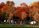 ompetitors participate in the Fedeiguayas Soccer League on November 10, 2007 at Flushing Meadows Park in Queens, New York.