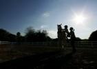 Horse_Days-8