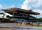 CANOVANAS, PUERTO RICO - NOVEMBER 11:  Horses and Jockeys round turn one during a race in front of the grandstand which was heavily damaged by Hurricane Maria at the Hipodromo Camarero on November 11, 2018 in Canovanas, Puerto Rico. The Grandstand has yet to be repaired.  The effort continues in Puerto Rico to remain and rebuild more than one year after the Hurricane Maria hit and devastated the island on September 20, 2017. The official number of deaths from the disaster is 2,975.