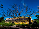 SANTURCE, PUERTO RICO - NOVEMBER 12:  A school bus is seen under a fallen tree on November 12, 2018 in Santurce, Puerto Rico. The tree fell on the bus during Hurricane Maria.  It has not been removed more than a year later.  The effort continues in Puerto Rico to remain and rebuild more than one year after the Hurricane Maria hit and devastated the island on September 20, 2017. The official number of deaths from the disaster is 2,975.