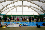 Evacuees line up to receive donated good at a shelter, originally an indoor sports facility in Rikuzentakata, Iwate, Japan.