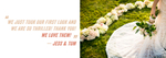 Eve Event Photography bride and groom positive review of their Shrewsbury, VT wedding.