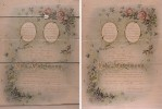 Lithograph and pen & ink on heavyweight wove paper, 16{quote} x 20{quote}Before and after treatment