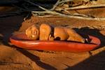 Aboriginal Austraia oral history. Stolen Genrations. Uluru.