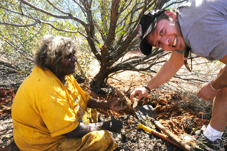 native bush foods