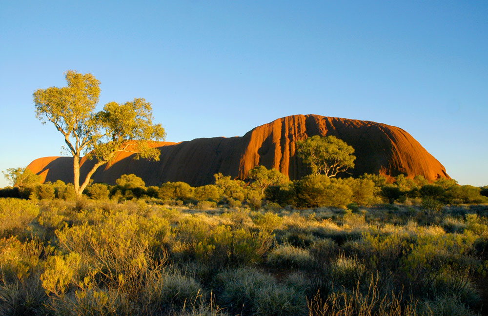 Early Morning At Uluru