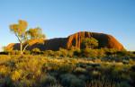 Early Morning At Uluru