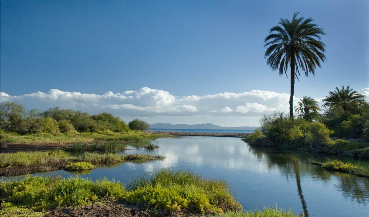 Tidal Lagoon
