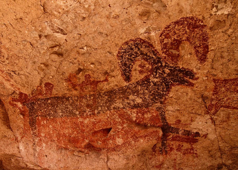 Borrego Cueva de las Flechas