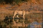 Africa_1999-32
