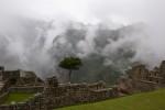 Machu_Picchu-43