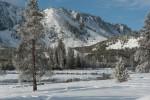 Yellowstone_2010-24