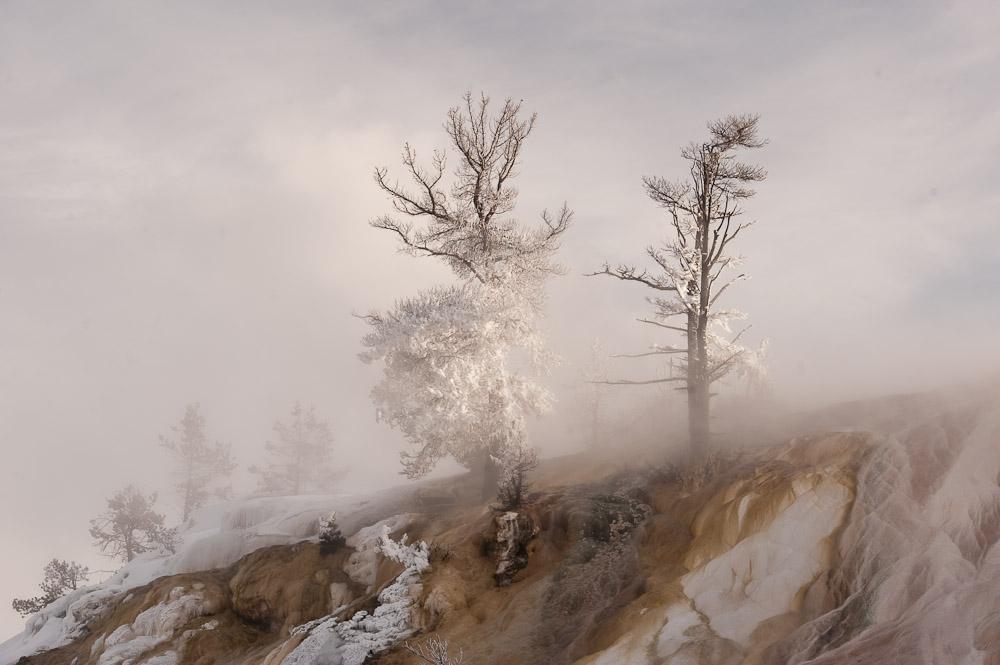 Yellowstone_2010-41