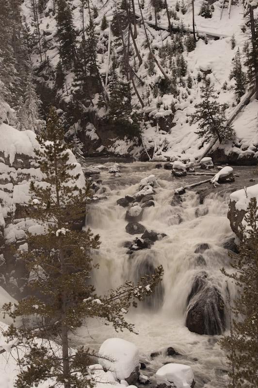 Yellowstone_2010-69