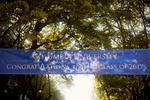 Elsbeth-Graduation-Day-2-3-Website-196