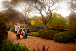 Fall-Chicago-Cantigny-Gardens-Family-Session-014