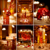 Indian-Luxury-Drake-Hotel-Chicago-Wedding-04