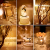 Ritz-Carlton-Four-Seasons-Hotel-Chicago-Asian-Wedding-07