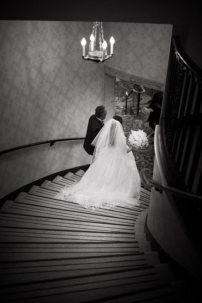 Shailee-David-Wedding-Website-005