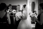 Shailee-David-Wedding-Website-062