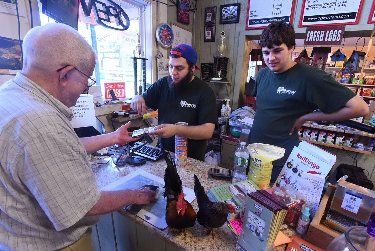 Brooklyn Farm & Pets employee Nate Gebo, center, makes change for customer Dick Booth, as two Serama chickens hang out on the counter. At right, is employee Mike Grady.
