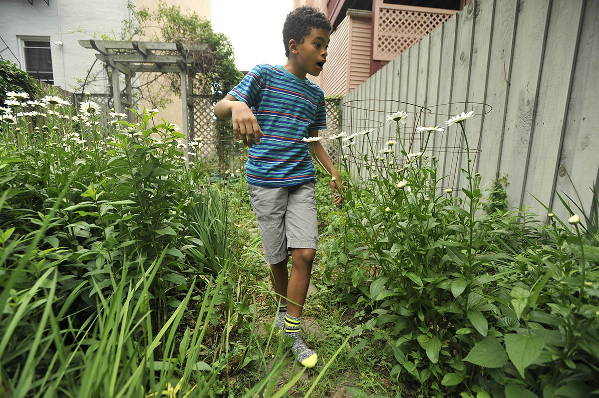 Allen picks berries in the backyard of his father's Jersey City home.