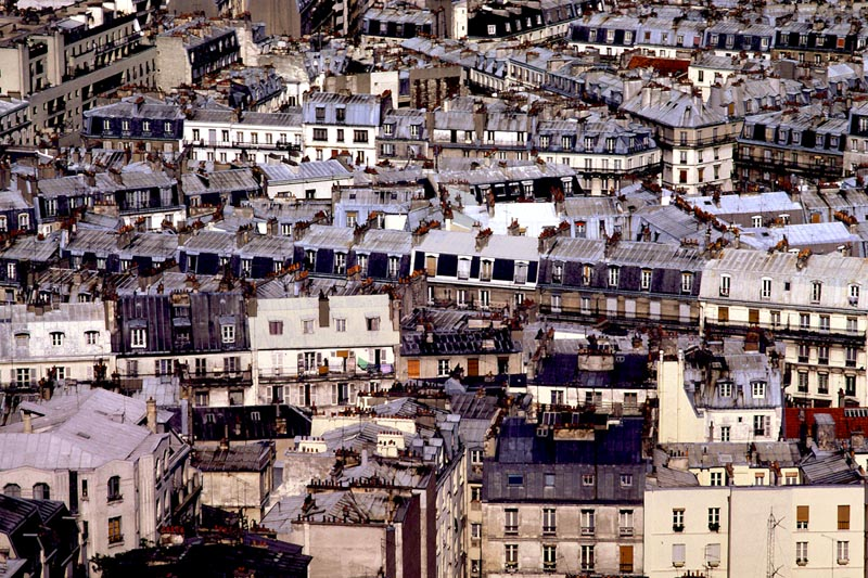 View from Sacre-Coeur. Paris.
