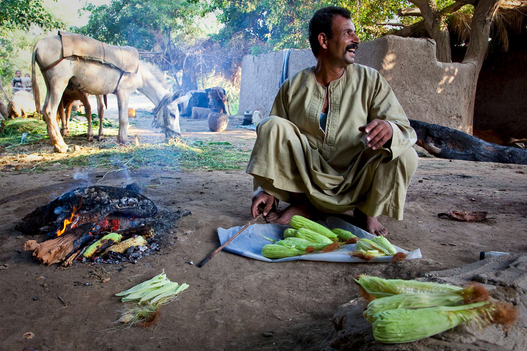 Roasting corn near Beni Suef.