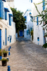 Streets of Sidi Bou Said.