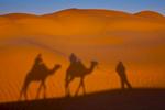 Desert shadows near Ksar Ghilane.