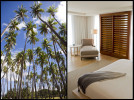 Kapuaiwa Coconut Grove, Molokai.  The luxury suite at the Modern Honolulu shot for The New York Times.