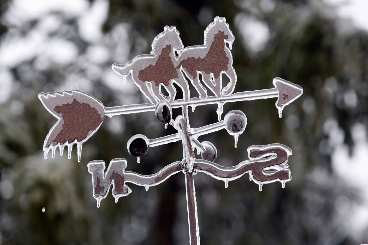 Water drips from a weather vane my wife bought years ago in Wyoming, after an ice storm came through Kingwood Township, NJ on 2/2/11.