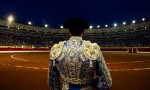 VictorFraile_Portfolio_Stories_Bullfighting_01
