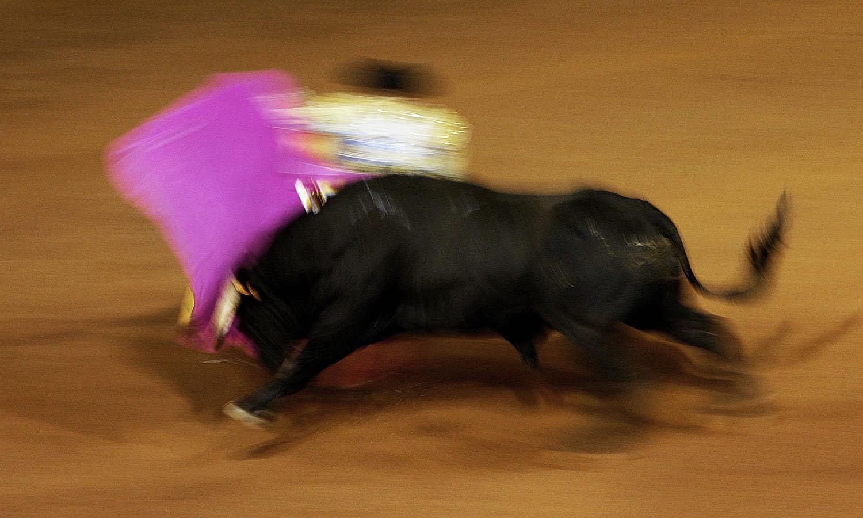 VictorFraile_Portfolio_Stories_Bullfighting_04