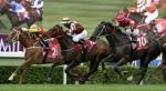 Victor_Fraile_Portfolio_Portfolio_Horse_Photographer_Hong_Kong_82