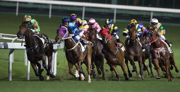 Victor_Fraile_Portfolio_Portfolio_Horse_Photographer_Hong_Kong_83