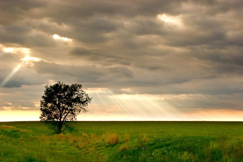 Kansas landscape photography jereme thaxton - Garden design ks ...