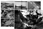 PIEL de FOTO 10-2012 (Spain)