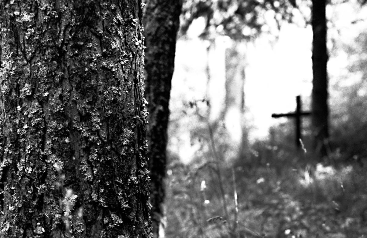 A cross in the middle of the woods is a common sign near Vajont.