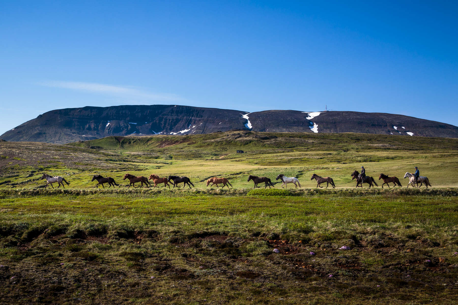Iceland---McGill033