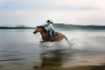 Rodeo---McGill018