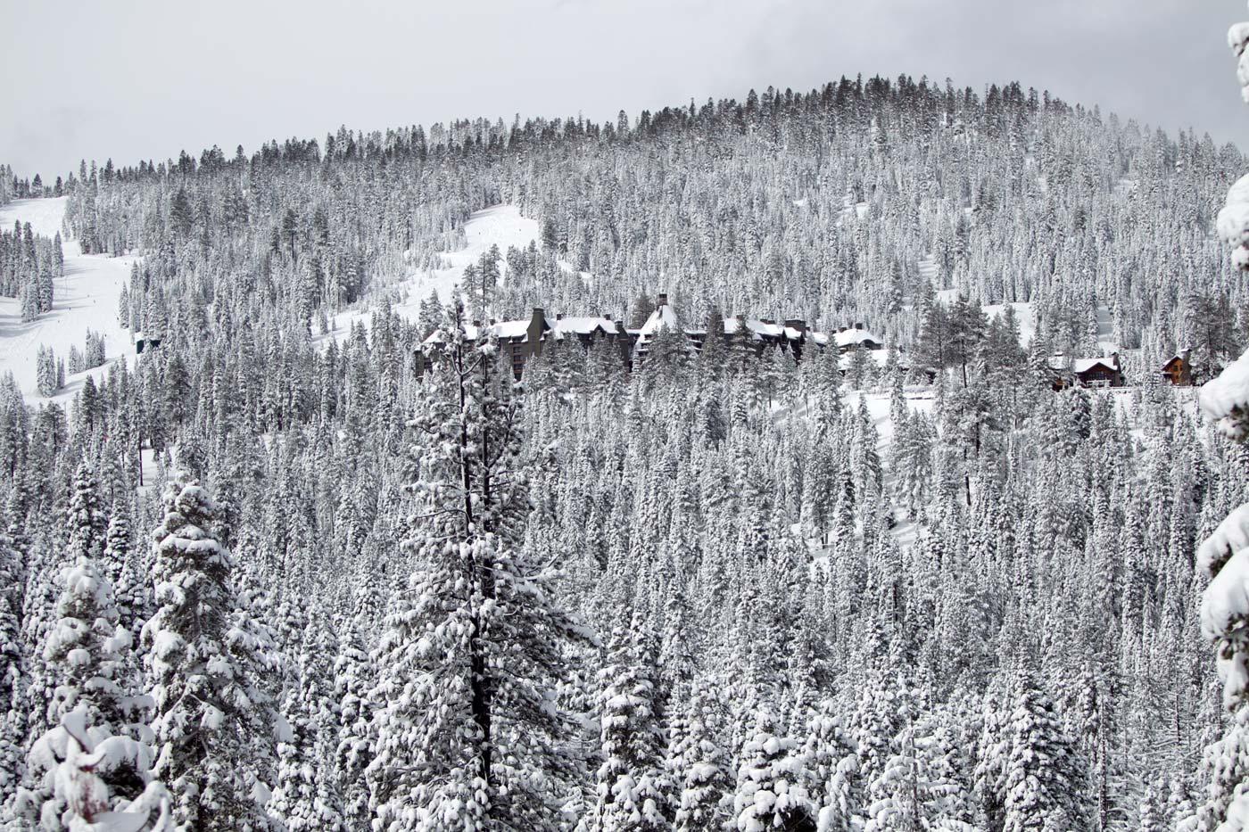 Ritz-Tahoe