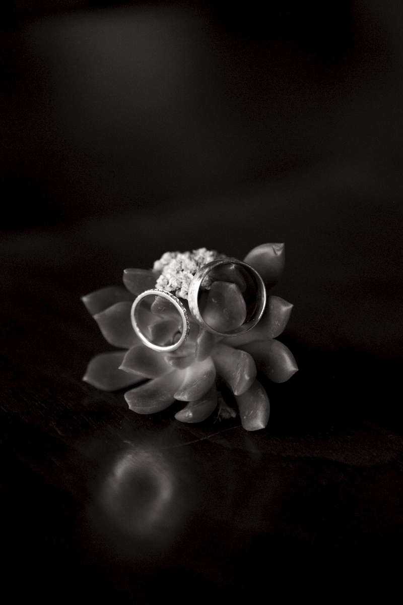 wedding-rings-Tahoe-wedding
